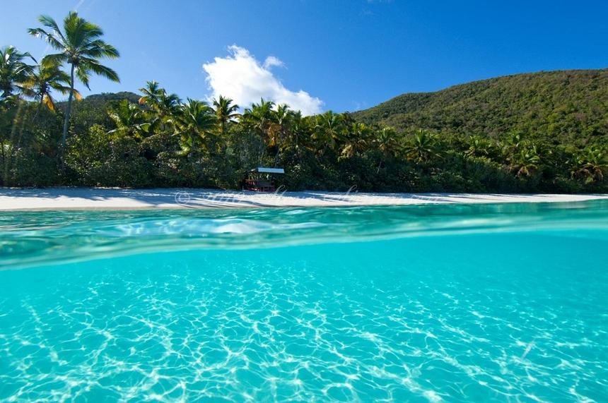 пляж в Бухте Транк на острове Сент-Джон