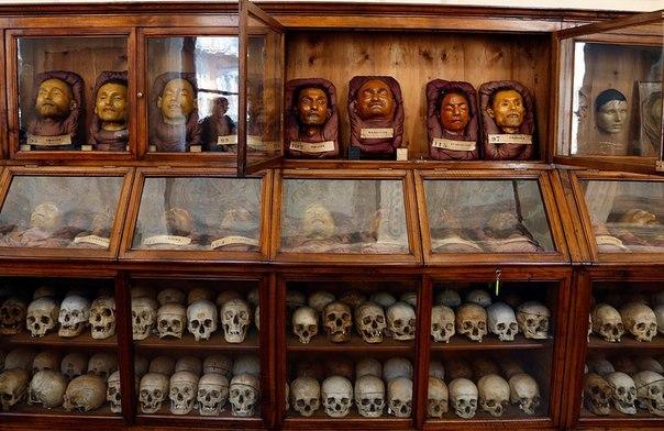 Ломброзо – музей криминальной антропологии