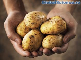 картофель на марсе