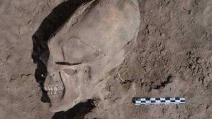 на Марсе череп пришельца-йети