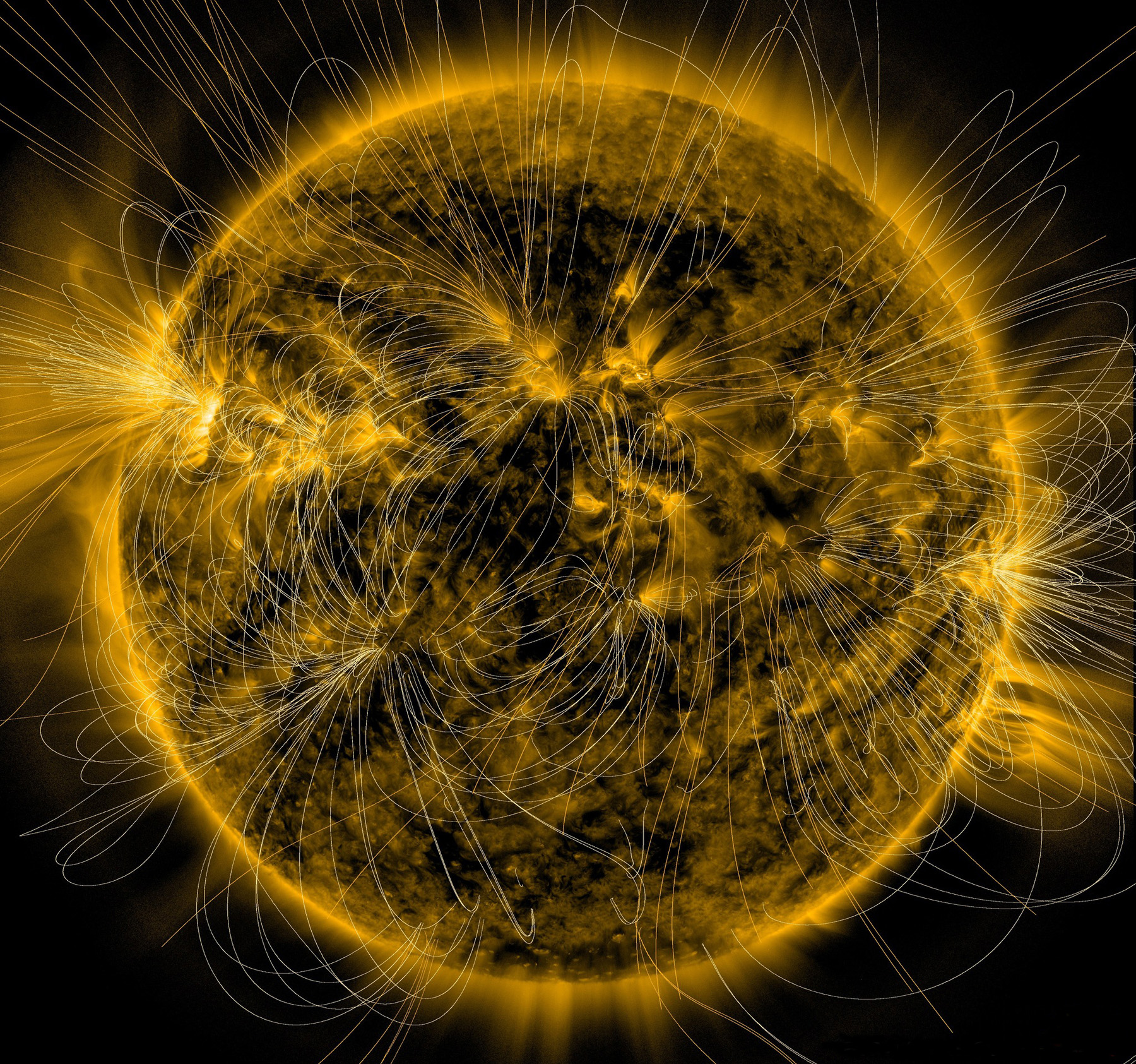Солнце с магнитными полями