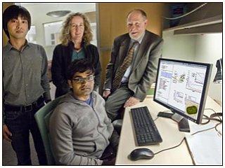 Распутывая квантовый клубок фотосинтеза