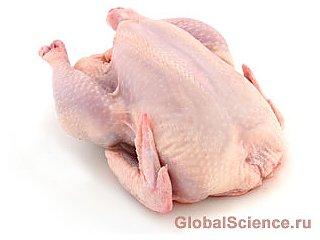 """Ученые разрешили """"парадокс мяса"""""""