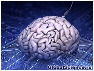 Мощность всех компьютеров в мире: один человеческий мозг