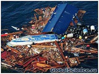 Стихийное бедствие в Японии грозит берегам США сильным загрязнением