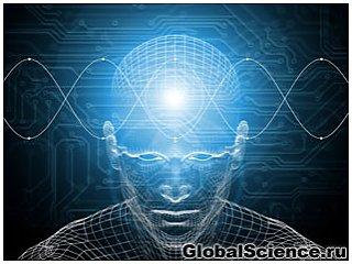 Как продлить активную деятельность мозга?