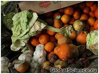 Свыше миллиарда тонн пищи идет в отходы каждый год