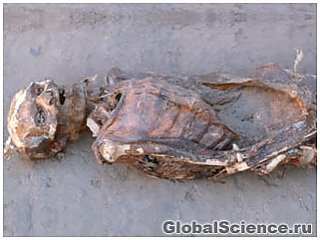 В нубийских мумиях обнаружены следы современных болезней