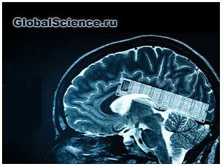 Ученые создали первый модуль памяти для мозга