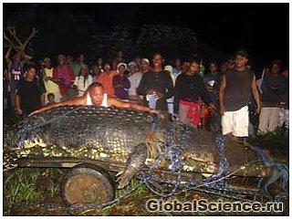В Филиппинах после трехнедельной охоты был пойман гигантский крокодил