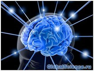 Электрическое стимулирование мозга облегчает процесс обучаемости