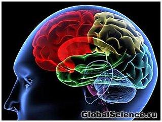 Болезнь Альцгеймера может предаваться подобно инфекции