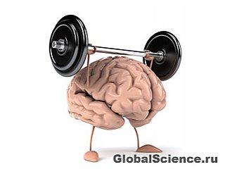 Ягоды надолго сохранят здоровье мозга
