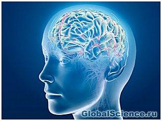 Как связаны между собой эмоции и внимание в мозге?