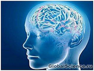 Зависть – естественный механизм нашего мозга