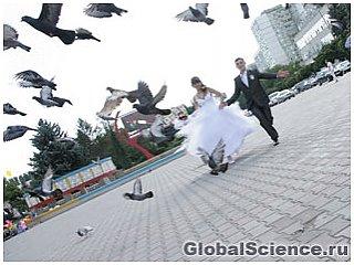 Простой способ сделать брак счастливым