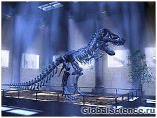 Ученые усомнились в признаке холоднокровности динозавров
