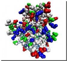Ученые озадачились генетикой роста