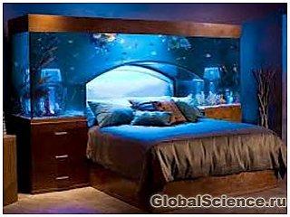 Кровать с аквариумом в изголовье вызывает восторг