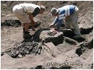 Самое древнее городище в Европе раскопали в Болгарии