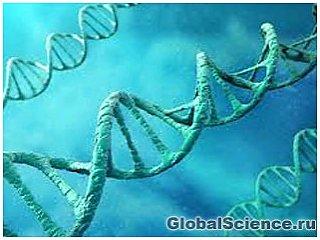Ученые сфотографировали ДНК