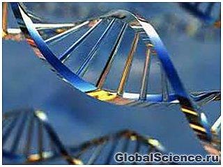 Ученые: ген ожирения связан с раком кожи