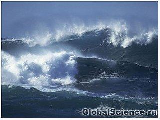 Биологи обнаружили ниже морского дна параллельный мир