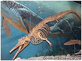 Тираннозавры умели плавать