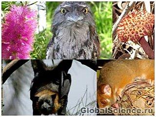 Потепление может стать причиной исчезновения многих видов животных