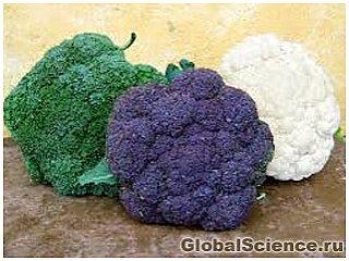 Самым полезным овощем признана цветная капуста