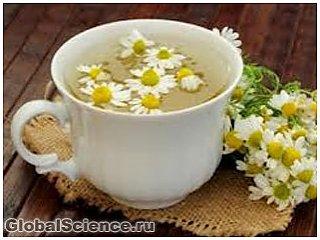 Петрушка, сельдерей и ромашковый чай предотвращают развитие рака