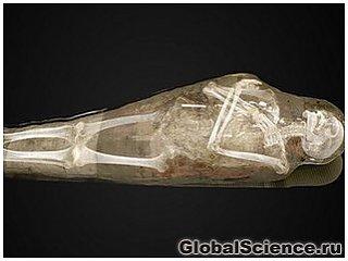 Посетители музея в Швеции увидят мумии изнутри