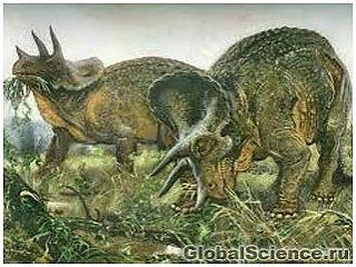 В США нашли останки рогатого динозавра