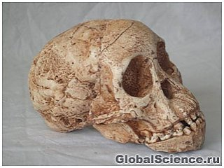 Находка учёных в Китае раскрывает новые сведения о происхождении людей