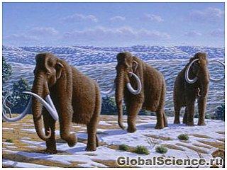 Мамонты вымерли из-за перемены климата