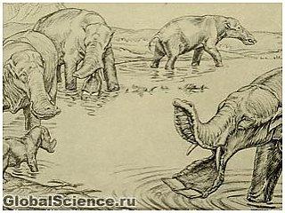 У доисторических слонов вместо хобота был клюв