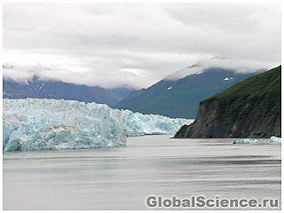Древние деревья обнаружены подо льдами Аляски