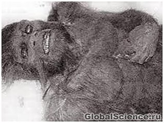 У США знайдений захований 50 років тому труп йєті