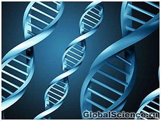 Обнаружены новые гены, повышающие риск болезни Альцгеймера