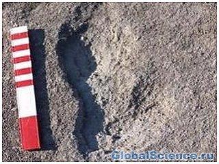 Британскими учеными найден след человека, жившего 800 тысяч лет назад