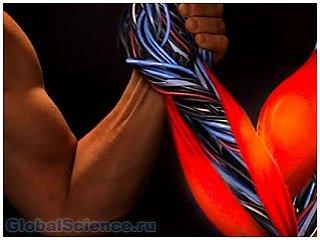 Американские ученые вырастили настоящие мускулы