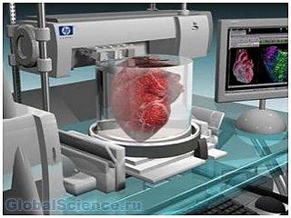 Ученые напечатают трехмерное сердце на принтере