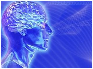Учеными создан аппарат, отключающий мозг