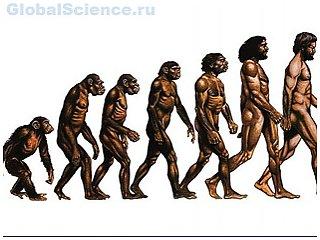 Американские учёные пробуют оспорить теорию эволюции