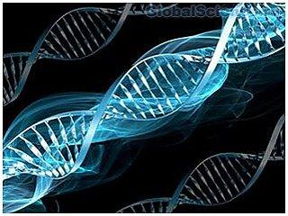 Связь генетического варианта с инфарктом и инсультом