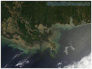 В мексиканском заливе обнаружено нефтяное пятно