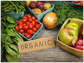 Ученые доказали пользу органического продукта