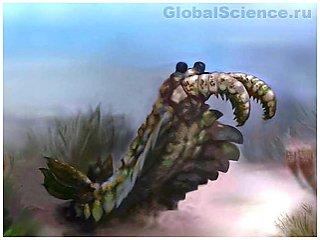 Палеонтологами были обнаружены хищные креветки