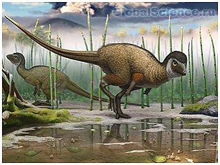 У забайкальских динозавров были перья и чешуя