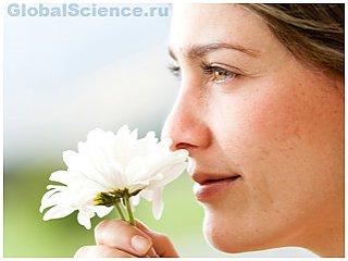 Ученые разъяснили, как мозг человека различает запахи